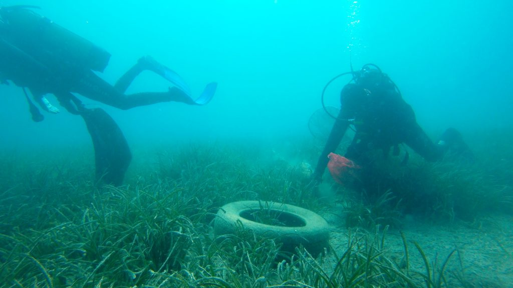 mevi temizlik MAVİ TEMİZLİK, GÖLKÖY'DE DEVAM ETTİ… golkoyde deniz dibi temizligi 2
