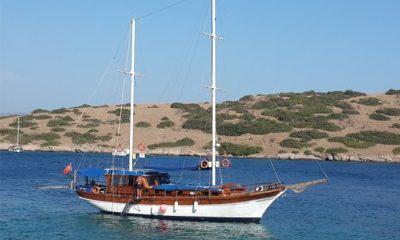 BODRUM'DA TURİSTLERİ GÖÇMEN SANIP İHBAR ETTİLER.. arena tekne 1 400x240