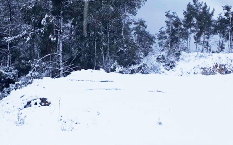 bodruma kar yağdı BURASI ULUDAĞ DEĞİL BODRUM! bodrum kar