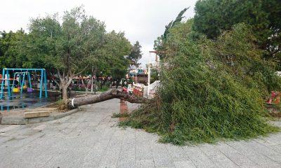 bodrum da fırtına FIRTINA BODRUM'U HIRPALADI… turgutreis ali peltek 2 400x240