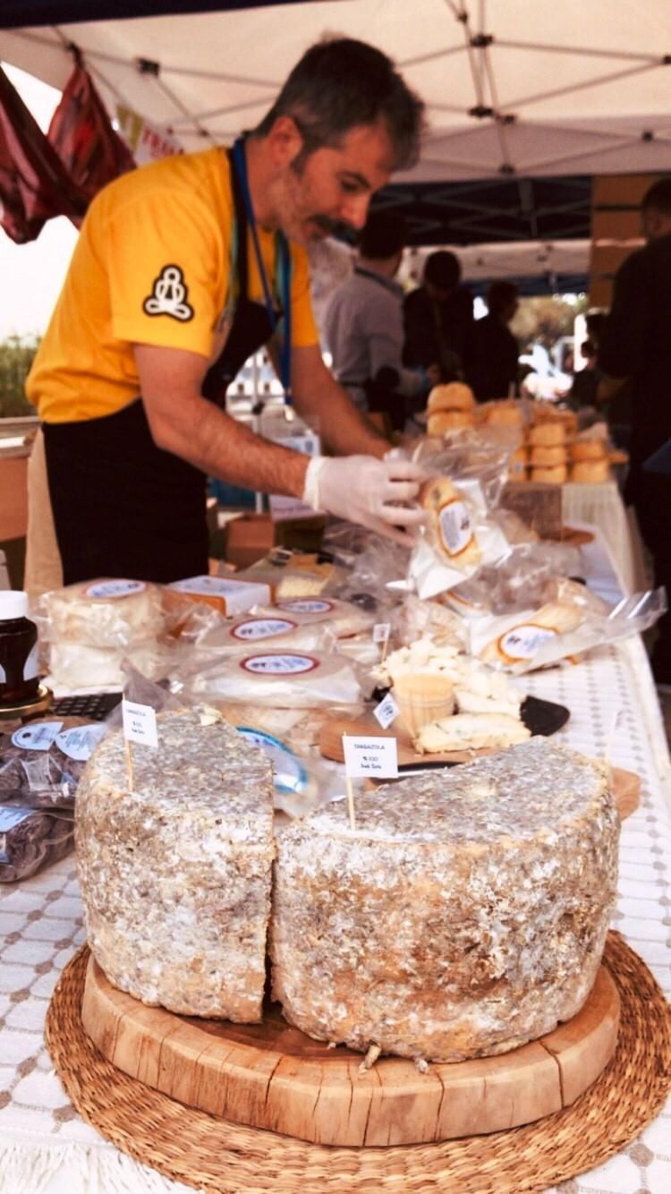 bodrum peynir festivali BODRUM ULUSLARARASI PEYNİR FESTİVALİ OASİS'TE YOĞUN İLGİ İLE GERÇEKLEŞTİ! bodrum peynir festivali 2