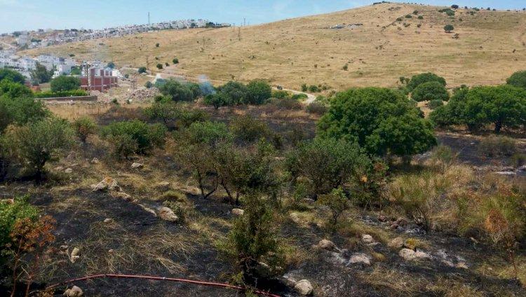 akyarlar yangın İZMARİT 3 DÖNÜMLÜK ALANI YAKTI… akyarlar yangin