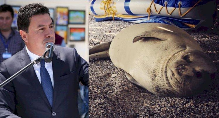 bodrum belediye başkanı ARAS: BİZ DE SENİ MİSAFİR ETMEKTEN ÇOK MUTLUYUZ BİNNAZ… aras binnaza sahip     kt