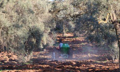ata tohumları Ata Tohumları Karaova'da toprakla buluştu… ata tohumlari toprakla bulusti 1 400x240