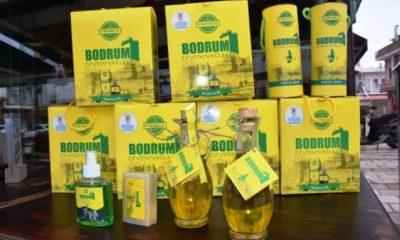 "bodrum zeytinyağları ""Bodrum Zeytinyağları"" sosyal projeyle satışta… bodrum zeytinya  lari 1 400x240"