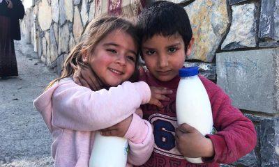 bodrum halk süt Çocukların sütü kapınızda… bodrum belediyesi halk sut 2 400x240