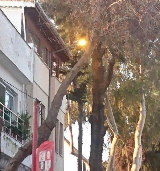 Turgutreis'in sokak lambaları gece sönüp, gündüz yanıyor… turgutreis aydem 1 560x600