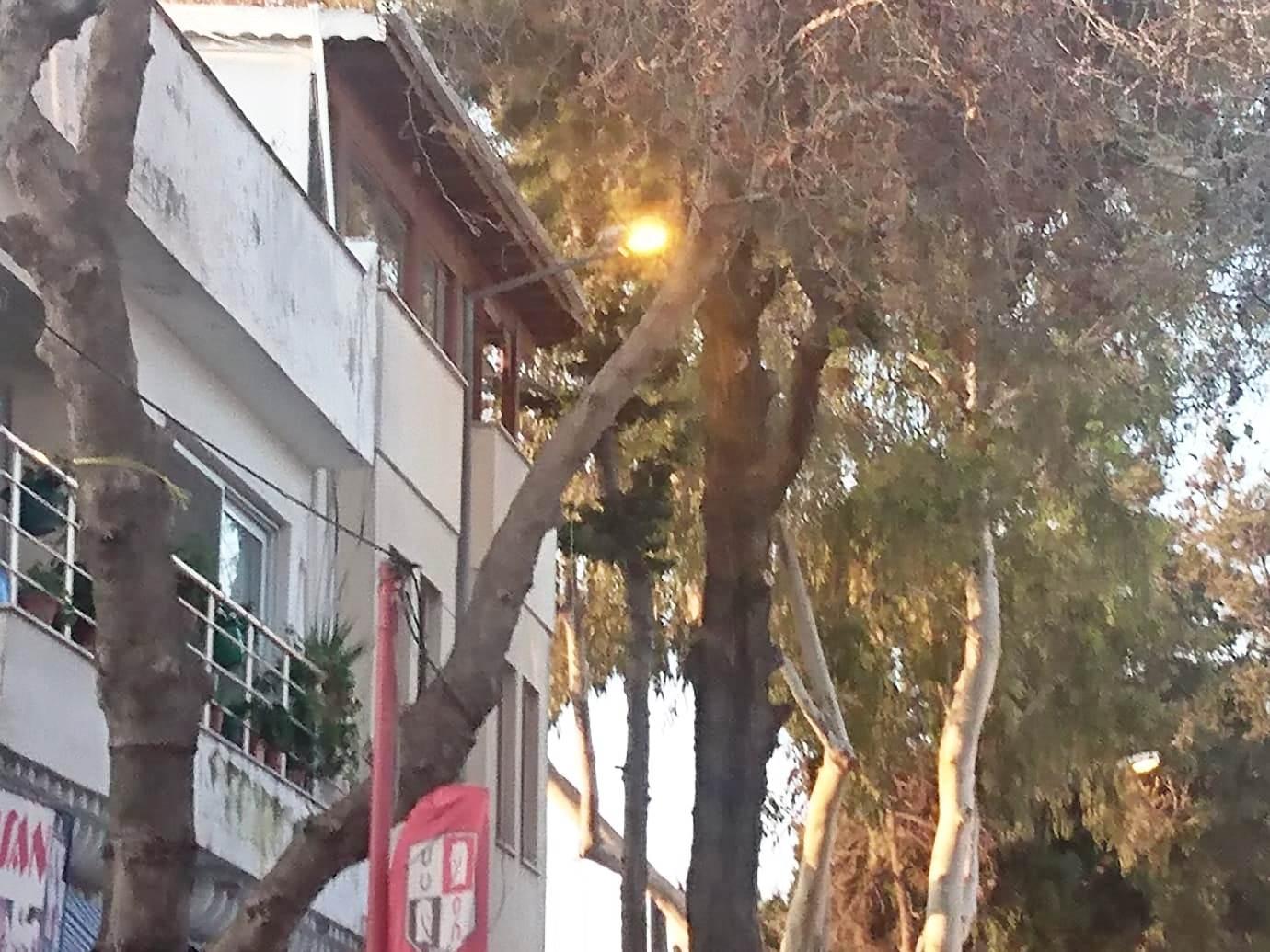 Turgutreis'in sokak lambaları gece sönüp, gündüz yanıyor… turgutreis aydem 1