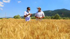 Muğlalı Çiftçiler Üretiyor…