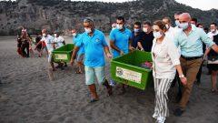 Tedavi Edilen 4 Caretta Caretta ve 25 Yavru Denizle Buluştu…