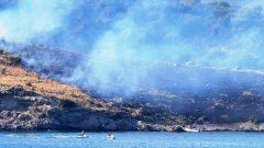 Büyük Ada'da çıkan yangın söndürüldü